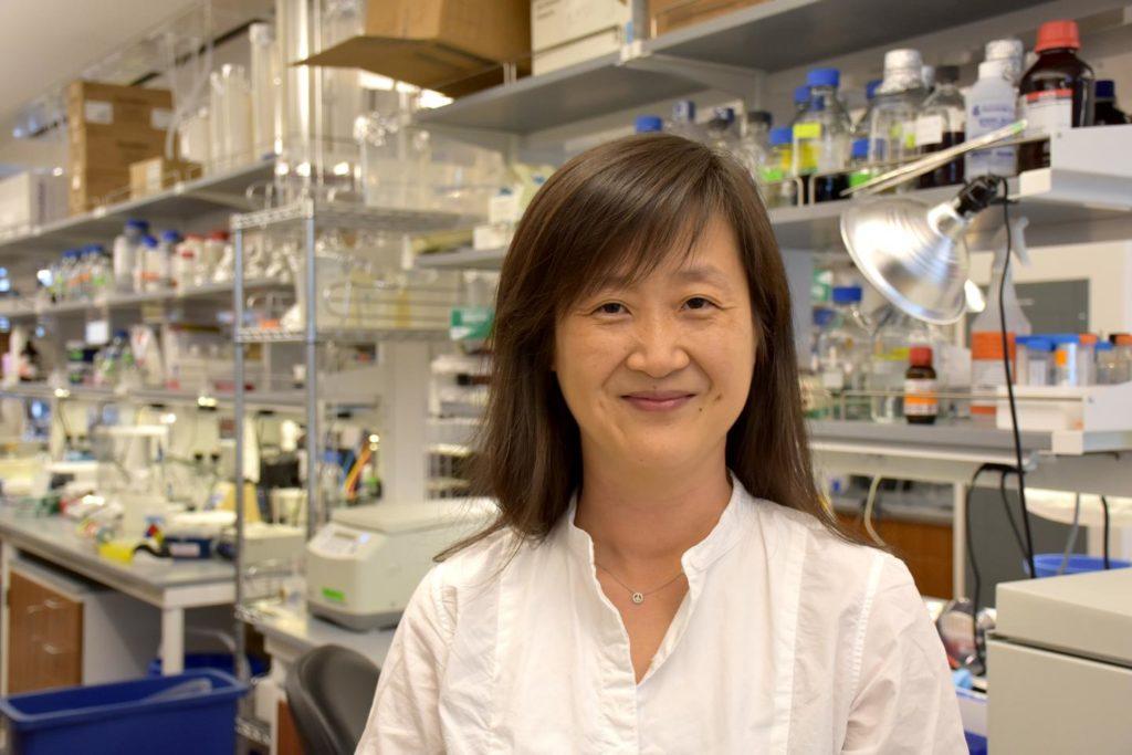 Novel Mechanism Advancing Brain Metastasis Found At Wistar